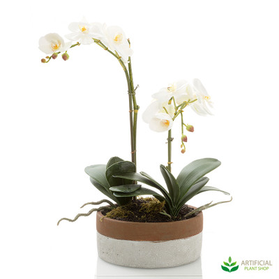 artificial phal orchid arrangement in two-tone pot