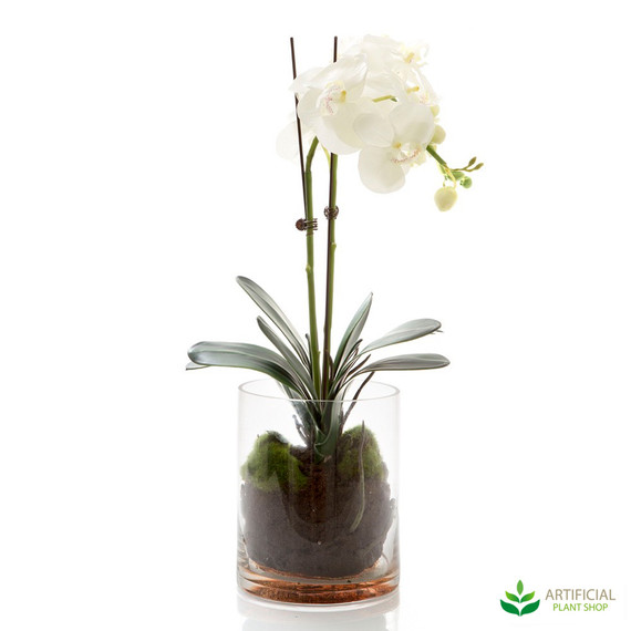 artificial white orchids in glass vase
