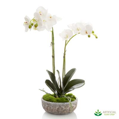 artificial white orchid arrangement potted