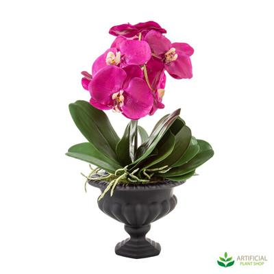 Fuchsia Orchids in Black Bowl 50cm