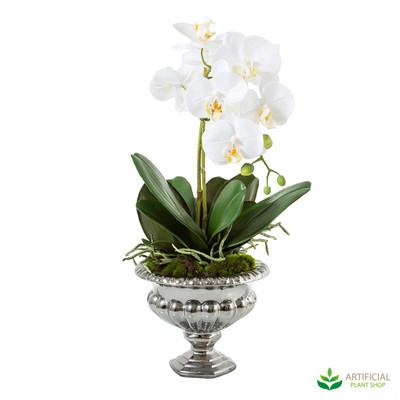 artificial white orchids in urn
