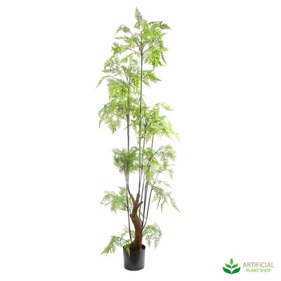 Large Forest Fern 1.8m