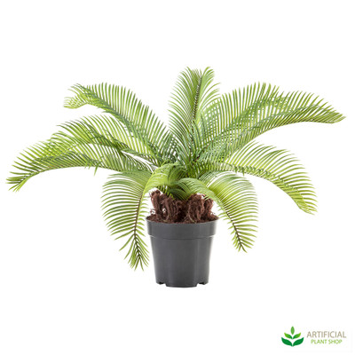 artificial Cycad palm