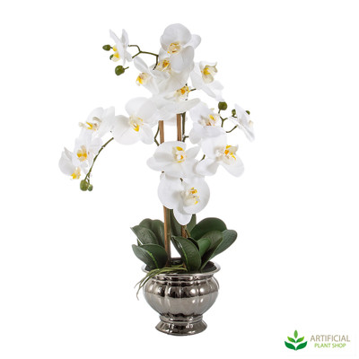 artificial potted orchids