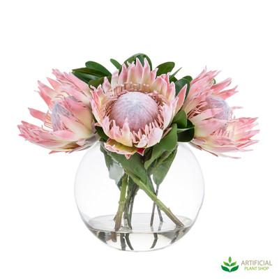 Giant Protea in Glass Vase 38cm