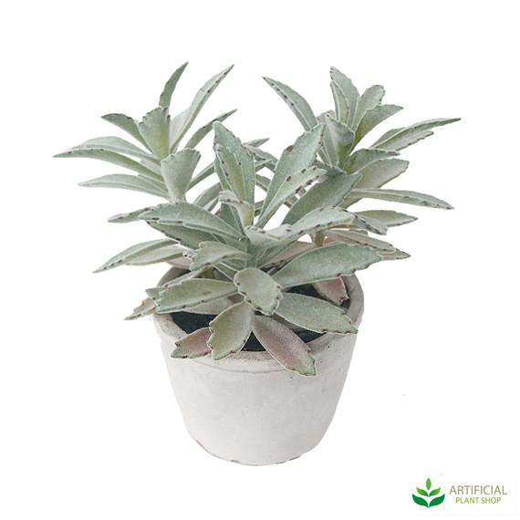 artificial succulent pot plant