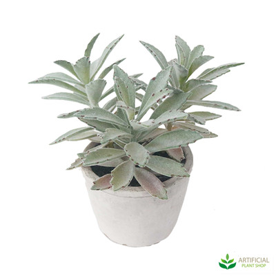 artificial succulent pot plant