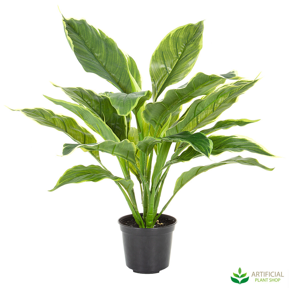 Artificial Hosta Plant 42cm