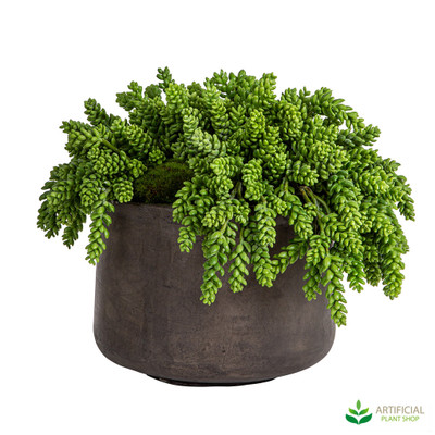 Artificial succulents in pot