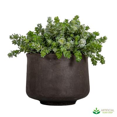 Artificial succulents in pot