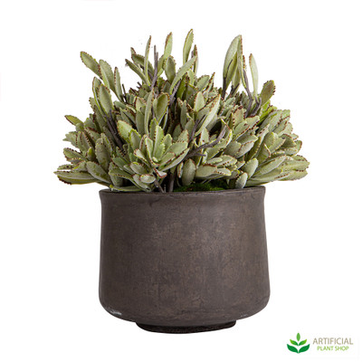 Artificial desert succulent potted