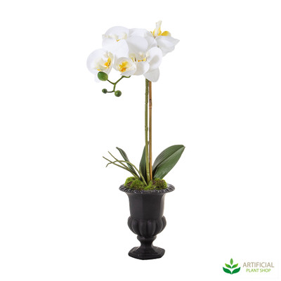 Artificial Orchids in Black urn