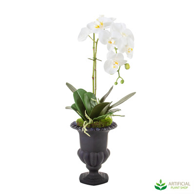 Artificial Orchids in urn