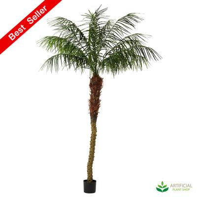 Artificial Phoenix Plam Tree