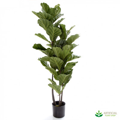 Fiddle Leaf Tree 1.33m