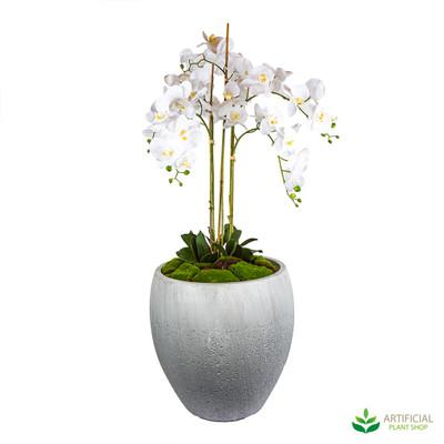 Artificial Orchid Flower arrangement with pot