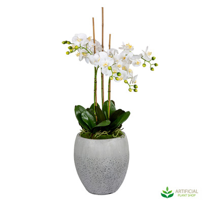 Janlyn White Orchid Arrangement 1.05m