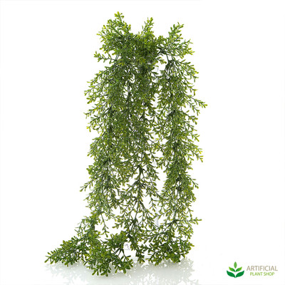 Hanging Senecio Bush 85cm (pack of 4)