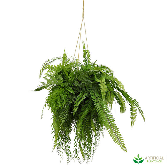 fake hanging fern