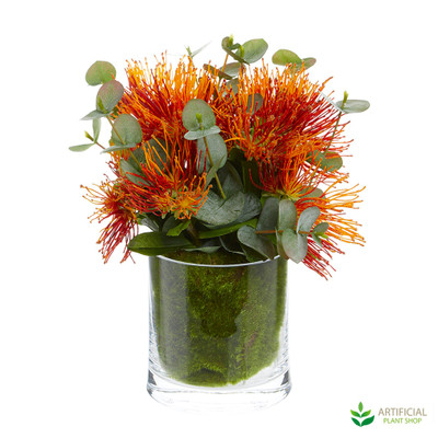 Red Proteas in Small Glass Vase 33cm