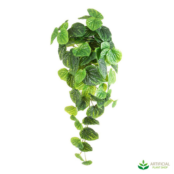 Artificial hanging plant - peperomia