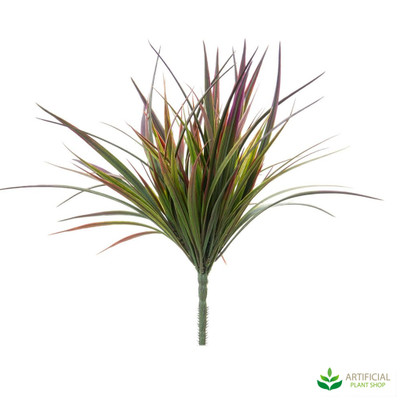 Burgundy Grass Plant 34cm (pack of 6)