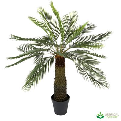 Cycad Palm Tree 1.4m