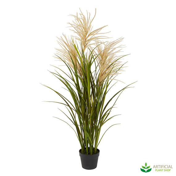 artificial pampas grass plant