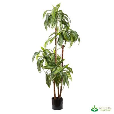 Artificial Dracaena plant