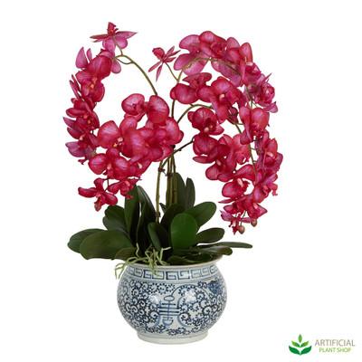 Hot Pink Orchid Flower arrangement