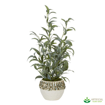Eucalyptus Leaf Arrangement