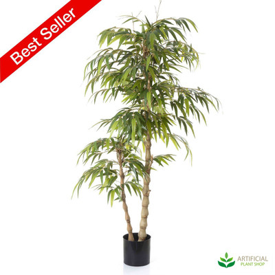 Bamboo Buddha Tree 1.4m with natural trunks