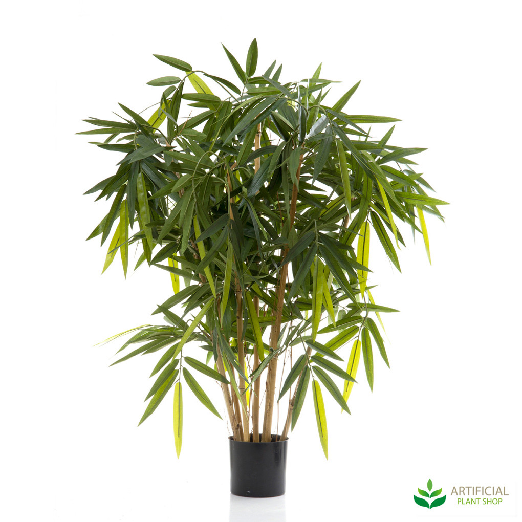Bamboo Tree 1m with natural trunks