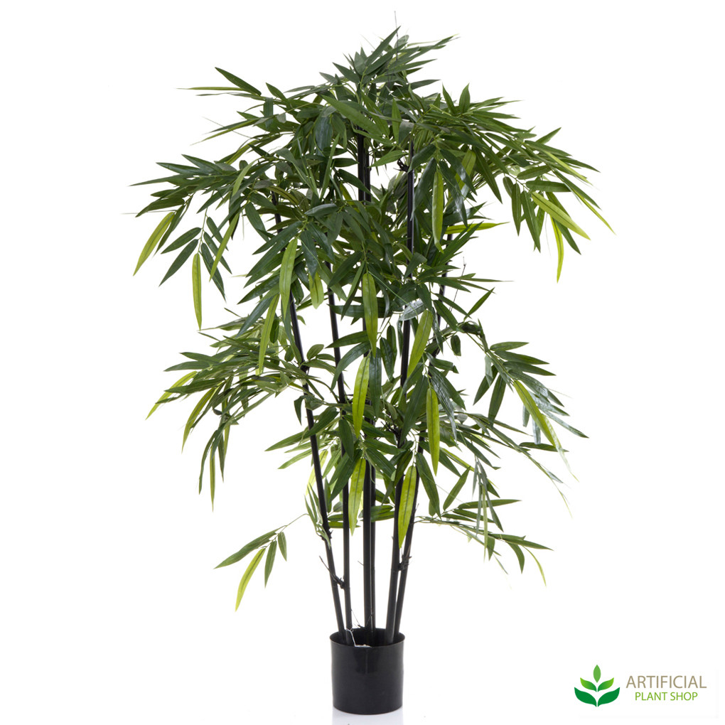 Bamboo Tree 1.5m with black trunks