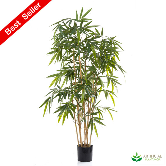 Bamboo Tree 1.6m with natural trunks