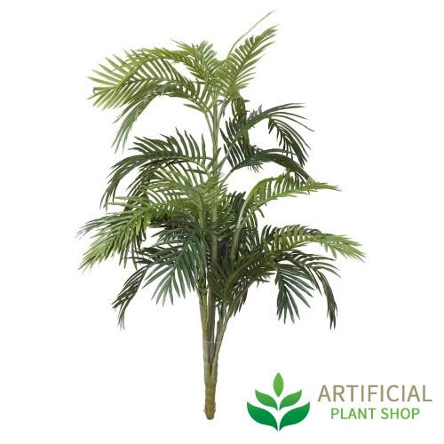 Areca Palm 1.2m without pot