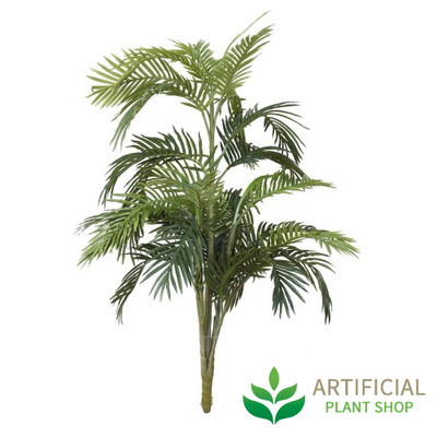 Areca Palm 1.2m without pot