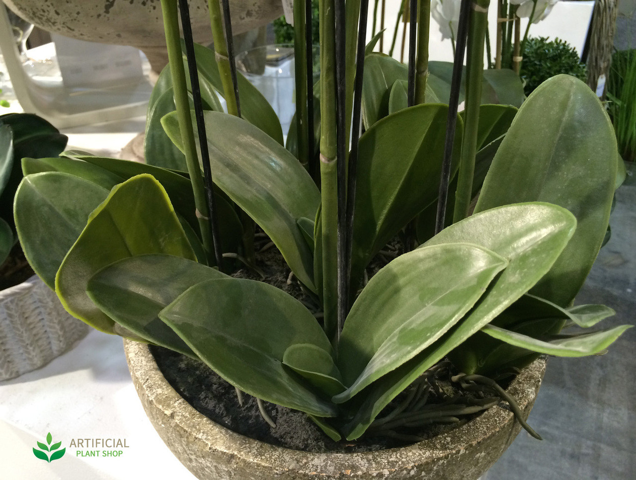 Artificial Orchid leaves