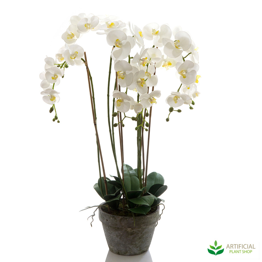Artificial White Orchid in Terracotta Pot