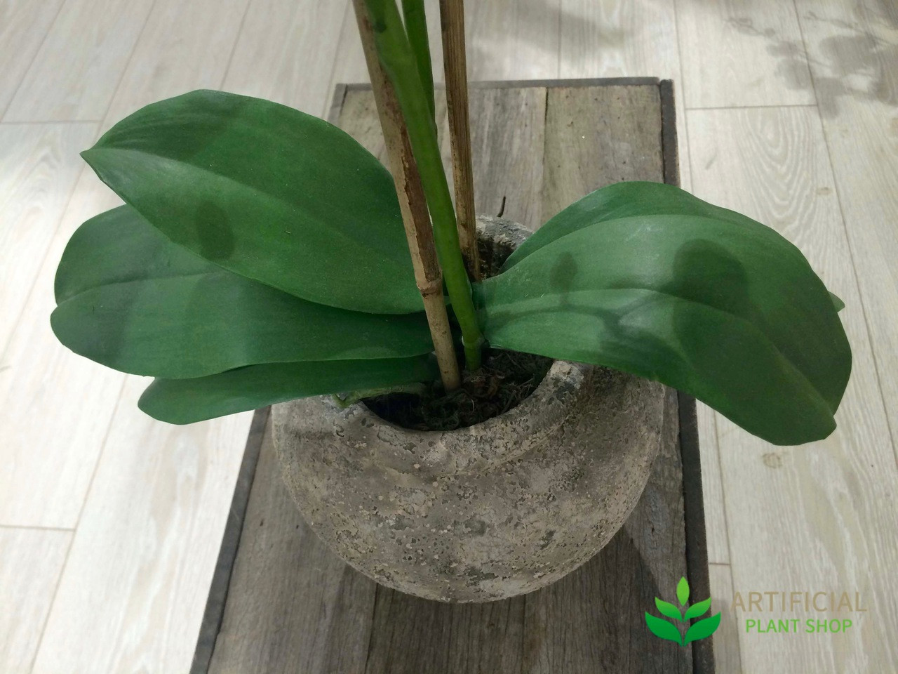 Artificial Orchid Leaves green