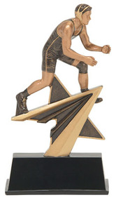 Power Wrestling Star Award | 7 Inch - Clearance