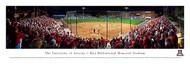 University of Arizona Panorama Print #3 (Softball) - Unframed