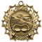 Swimming Ten Star Medal - Gold, Silver or Bronze | Swim Meet 10 Star Medallion | 2.25 Inch Wide Swimming Ten Star Medal - Gold