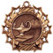 Academic Ten Star Medal - Gold, Silver or Bronze | Engraved Scholastic 10 Star Medallion | 2.25 Inch Wide - Bronze