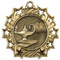 Academic Ten Star Medal - Gold, Silver or Bronze | Engraved Scholastic 10 Star Medallion | 2.25 Inch Wide - Gold