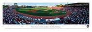 University of South Carolina Panorama Print #2 (Baseball) - Unframed