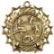 Track & Field Ten Star Medal - Gold, Silver or Bronze | Field Event 10 Star Medallion | 2.25 Inch Wide Track & Field Ten Star Medal - Gold