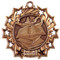 Reading Ten Star Medal - Gold, Silver or Bronze | Literacy 10 Star Medallion | 2.25 Inch Wide Reading Ten Star Medal - Bronze