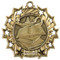 Reading Ten Star Medal - Gold, Silver or Bronze | Literacy 10 Star Medallion | 2.25 Inch Wide Reading Ten Star Medal - Gold