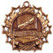 Honor Roll Ten Star Medal - Gold, Silver or Bronze | Scholastic 10 Star Medallion | 2.25 Inch Wide Honor Roll Ten Star Medal - Bronze